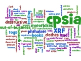 cpsiawordcloud