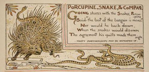 porcupinesnake2