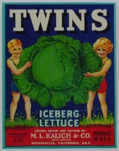 twinslettuce