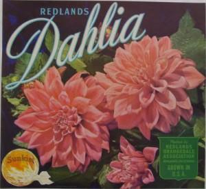 DahliaCrateLabel